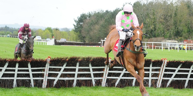Willie Mullins pleased by Annie Power recovery progress