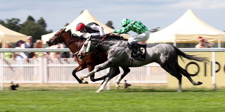 Spencer rides Gatsby in Eclipse