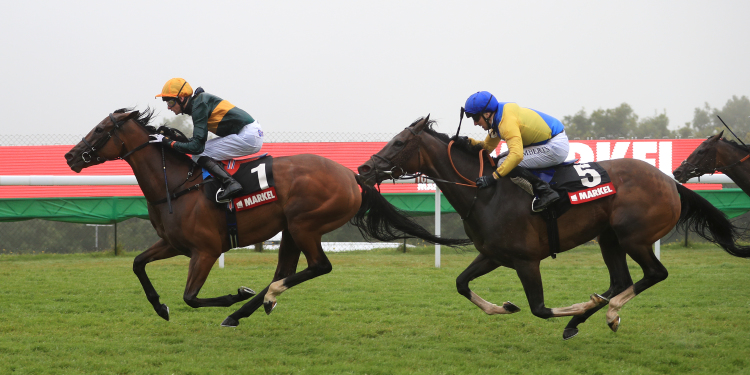 California shines in Lillie Langtry Stakes