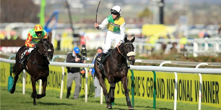 Many Clouds tops Grand National weights