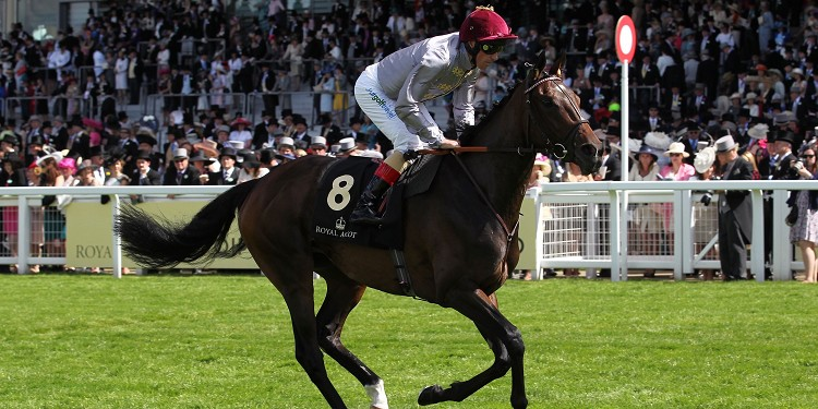 Treve set to bow out after Longchamp defeat
