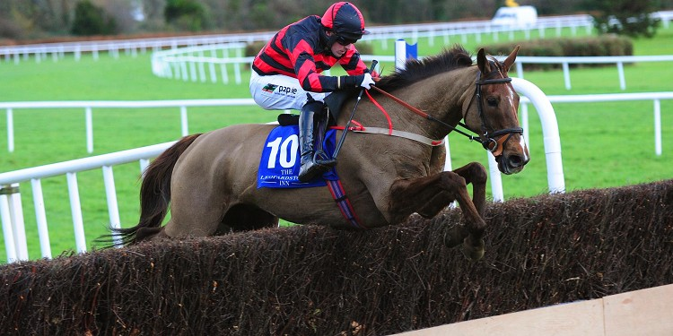 Sad postscript to Leopardstown hunter chase win for You Must Know Me