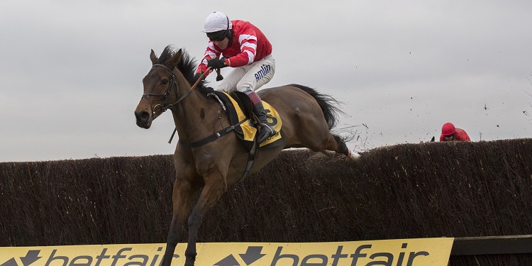 Coneygree stands firm at top of Hennessy field