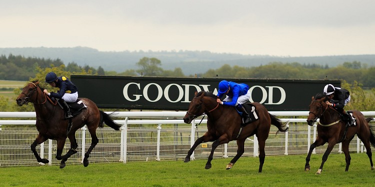 Storm The Stars dazzles at Goodwood