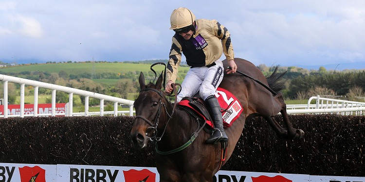 Mullins hoping Bob is back