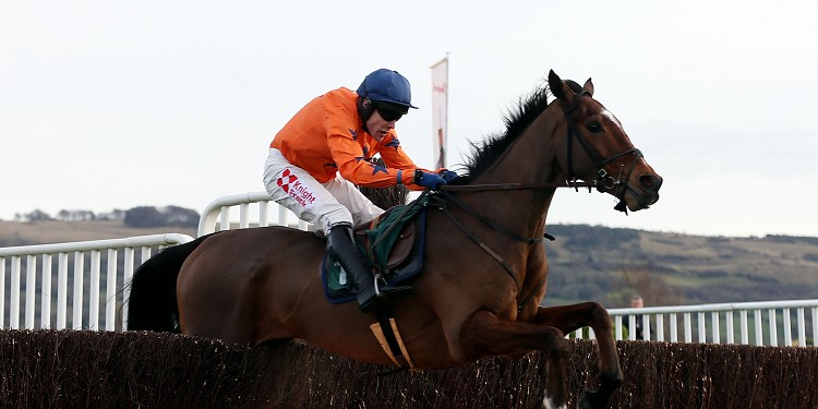 Paddy Power option for David Pipe's Kings Palace