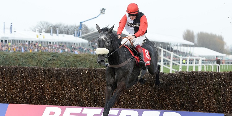 Saphir du Rheu tops 17 runners in Hennessy Gold Cup at Newbury