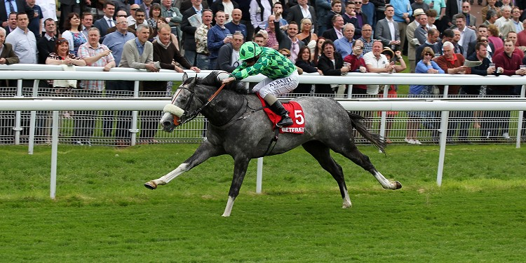 No going concerns for The Grey Gatsby