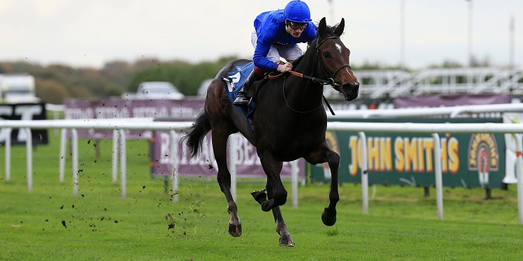 Romance out of Guineas